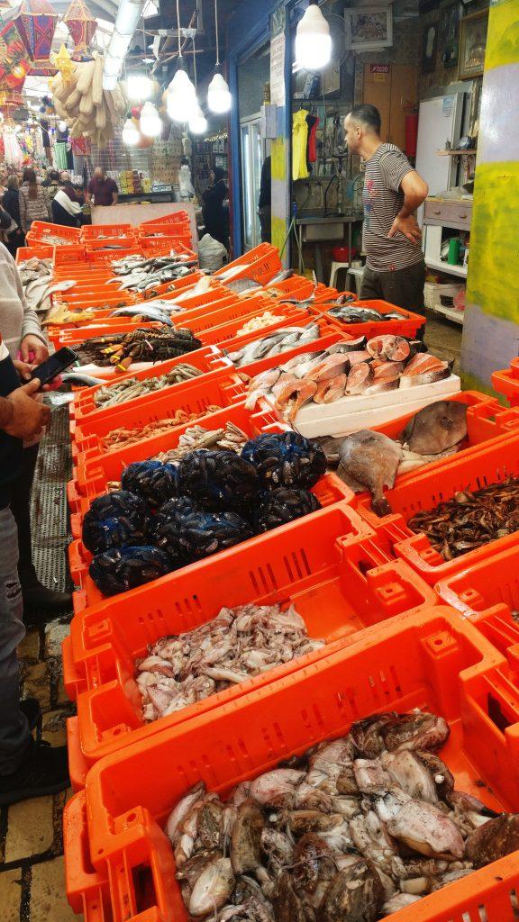 akko seafood